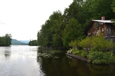 239-242 Branch Farm Rd, Saranac Lake, NY 12983 - #: 165365
