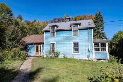 158 McKenzie Pond Road, Saranac Lake, NY 12983 - #: 167030
