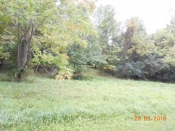 lot 17   Reichs Landing  17 Otisco NY 13110
