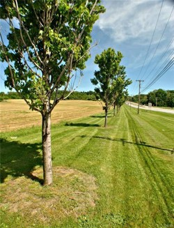 Lot E   Route 20 E Cazenovia NY 13035