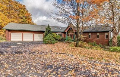 8866 Mulberry Lane, Manlius, NY 13104 - #: S1152771