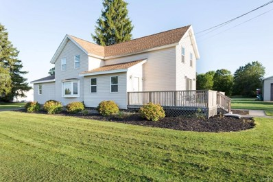 5197 Orangeport Road, Clay, NY 13029 - #: S1217297