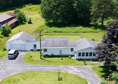 1331 County Route 6, Volney, NY 13069 - #: S1225822