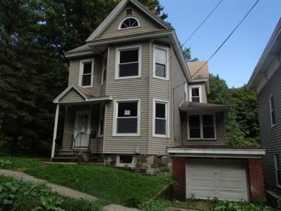 24 Skinner Street, Little Falls-City, NY 13365 - #: R1155139
