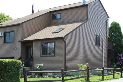 9 Walnut Ct, Fishkill, NY 12524 - #: 379770
