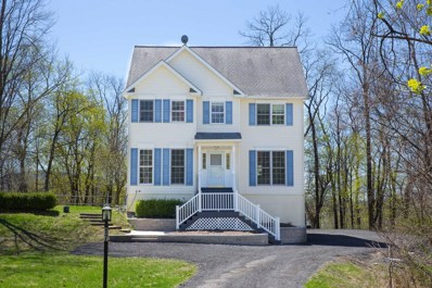 17 Deer Lick Ln, Beacon, NY 12508 - #: 380581