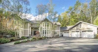 25 Dorns Wood Road, Woodstock, NY 12498 - #: 381942