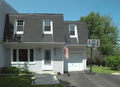 44 Larch Ct, Fishkill, NY 12524 - #: 383351