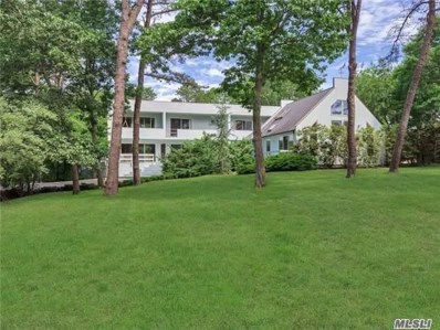 19 Old Canoe Place Rd, Hampton Bays, NY 11946 - MLS#: 2949186