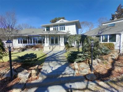 9 Duckwood Ln, Hampton Bays, NY 11946 - MLS#: 3004217