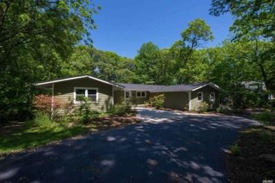 91 Stony Hill Path, Smithtown, NY 11787 - MLS#: 3032736