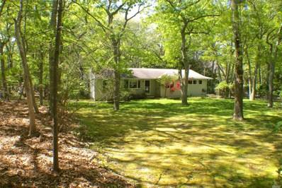 17 Island Creek Rd, Southampton, NY 11968 - MLS#: 3033093