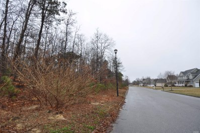 Lot 45 Barberry Ln, Center Moriches, NY 11934 - MLS#: 3035349
