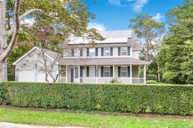 9 Woodland Park Rd, Bellport Village, NY 11713 - MLS#: 3040951