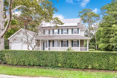 9 Woodland Park Rd, Bellport Village, NY 11713 - MLS#: 3040951