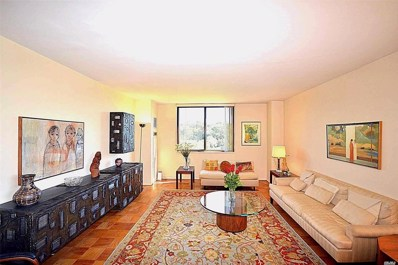 271-10 Grand Central, Floral Park, NY 11005 - MLS#: 3050524