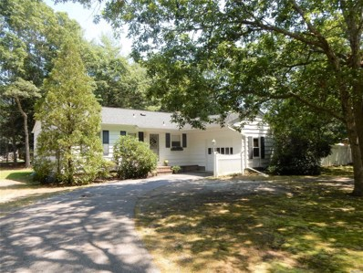 21 Deerfeed Path, E. Quogue, NY 11942 - MLS#: 3056588