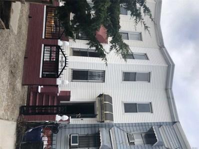 1343 St Marks Ave, Brooklyn, NY 11233 - MLS#: 3077993