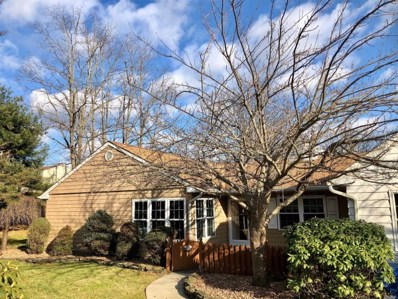 149 Theodore Dr, Coram, NY 11727 - MLS#: 3088819