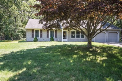 6 Summer St, Mt. Sinai, NY 11766 - MLS#: 3144309