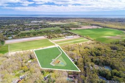 388 Stephen Hands Path, East Hampton, NY 11937 - MLS#: 3146355