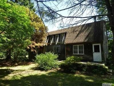 144 Auborn Ave, Shirley, NY 11967 - MLS#: 3147376