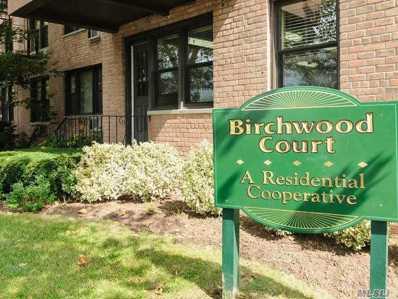 6 Birchwood Ct UNIT 3B, Mineola, NY 11501 - MLS#: 3150650