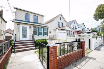 221-22 105th Ave, Queens Village, NY 11429 - MLS#: 3152901