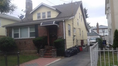 219-31 113th Ave, Queens Village, NY 11429 - MLS#: 3156868
