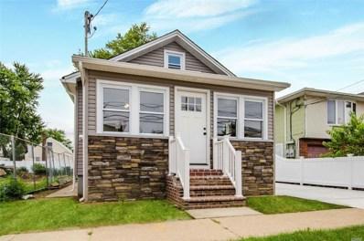 17 Hunnewell Ave, Elmont, NY 11003 - MLS#: 3157163