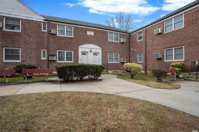 253-20 61st Ave UNIT Lower, Little Neck, NY 11362 - MLS#: 3158356