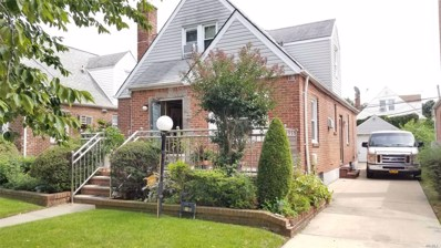 119-37 224 St, Cambria Heights, NY 11411 - MLS#: 3161830