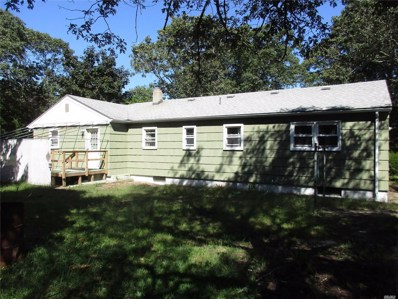 29 Dale Ave, Flanders, NY 11901 - MLS#: 3162376