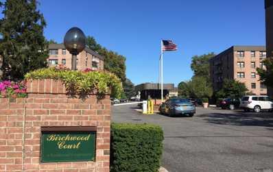 4 Birchwood Ct UNIT 5A, Mineola, NY 11501 - MLS#: 3166189
