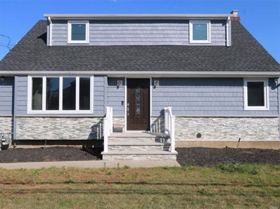 201 Lucille Ave, Elmont, NY 11003 - MLS#: 3167973