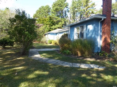 161 Flower Hill Dr, Shirley, NY 11967 - MLS#: 3169914