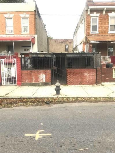 133 Dumont Ave, Brooklyn, NY 11212 - MLS#: 3173015