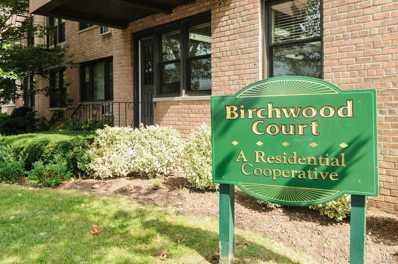 3 Birchwood Ct UNIT 4A, Mineola, NY 11501 - MLS#: 3173110