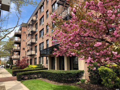 1 Birchwood UNIT 4P, Mineola, NY 11501 - MLS#: 3173641