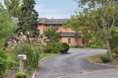 20 Carriage Ct, Syosset, NY 11791 - MLS#: 3173833