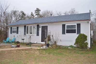 56 Ash St, Central Islip, NY 11722 - MLS#: 3176381