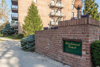 2 Birchwood Ct UNIT 1M, Mineola, NY 11501 - MLS#: 3179909