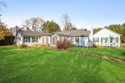 13 Academy Ln, Bellport Village, NY 11713 - MLS#: 3180869