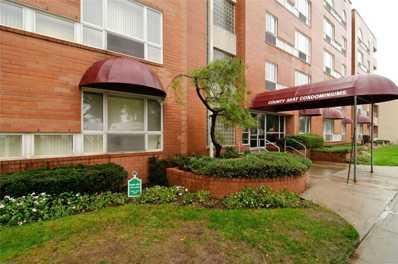 205 Mineola Blvd UNIT 4F, Mineola, NY 11501 - MLS#: 3185819