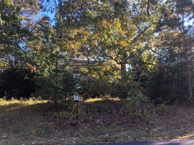 55 Silverbrook Dr, Flanders, NY 11901 - MLS#: 3191810