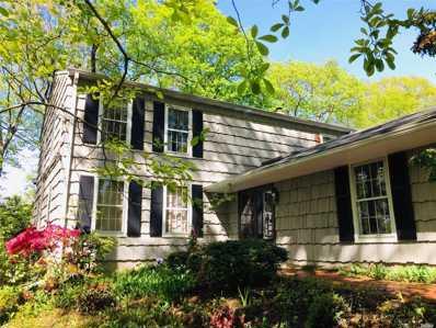 21 Hawks Nest Rd, Stony Brook, NY 11790 - MLS#: 3195087