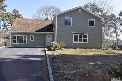 39 Redpine Rd, Medford, NY 11763 - MLS#: 3200451