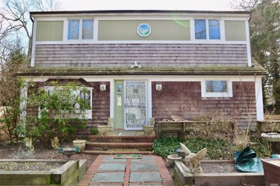 19 Indian Ave, Flanders, NY 11901 - MLS#: 3203799