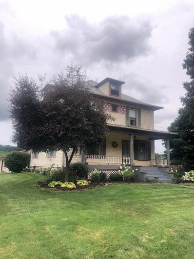 401 North Mount Vernon, Loudonville, OH 44842 - #: 221735