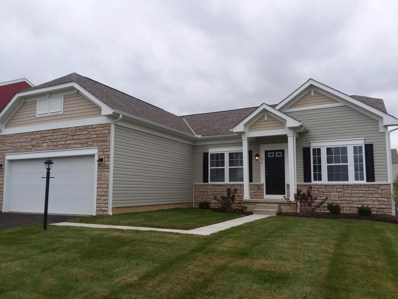 213 Weeping Willow Run Drive UNIT 207, Johnstown, OH 43031 - MLS#: 217043223